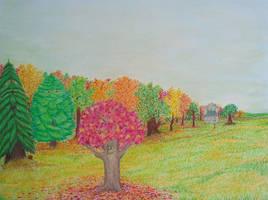 Maple's Colors 1