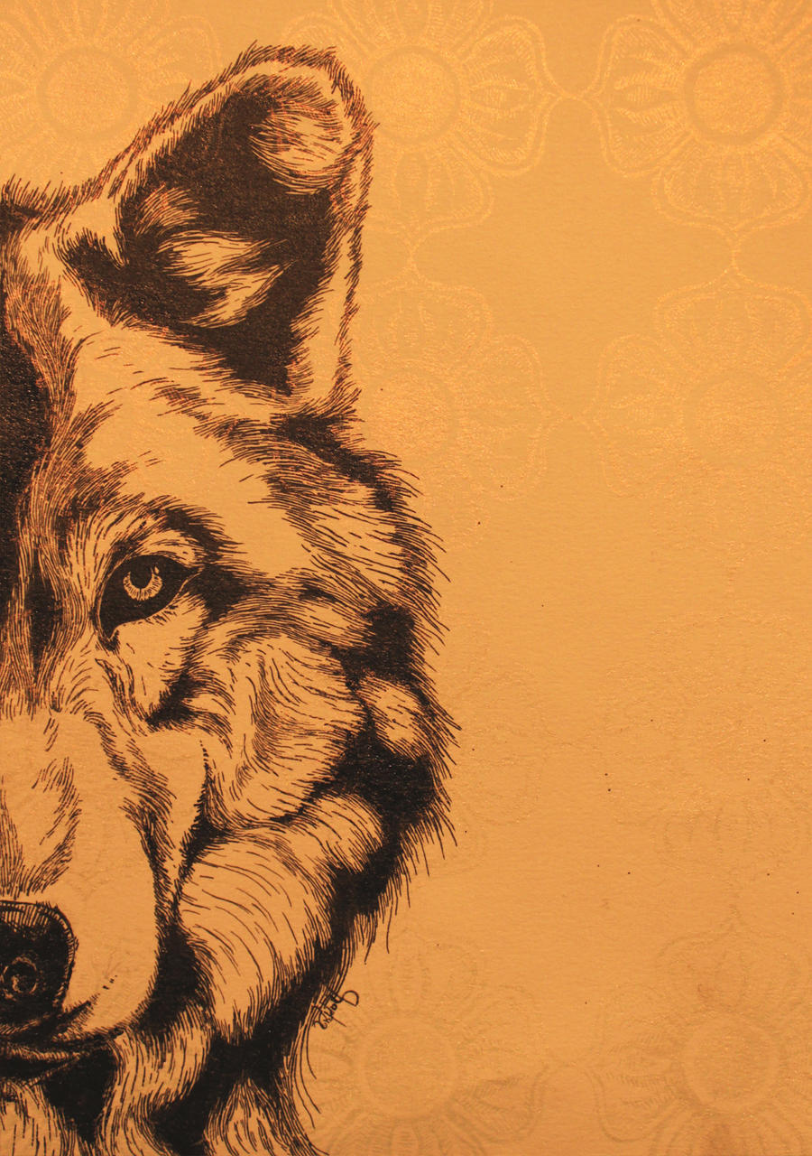 old half wolf  and pattern by felicitousfox on deviantart