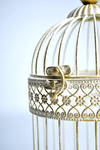 Little Birdie Cage by VelvetRedBullet