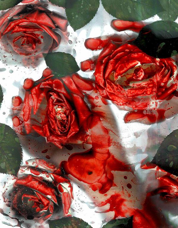 I Painted the Roses Red by VelvetRedBullet