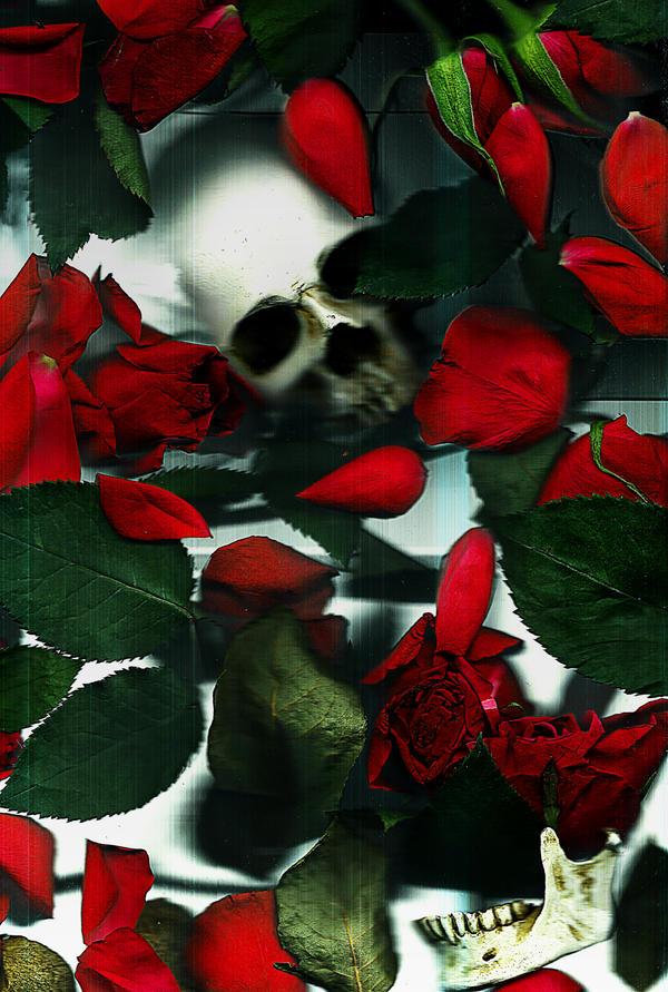 Death of a Lover by VelvetRedBullet