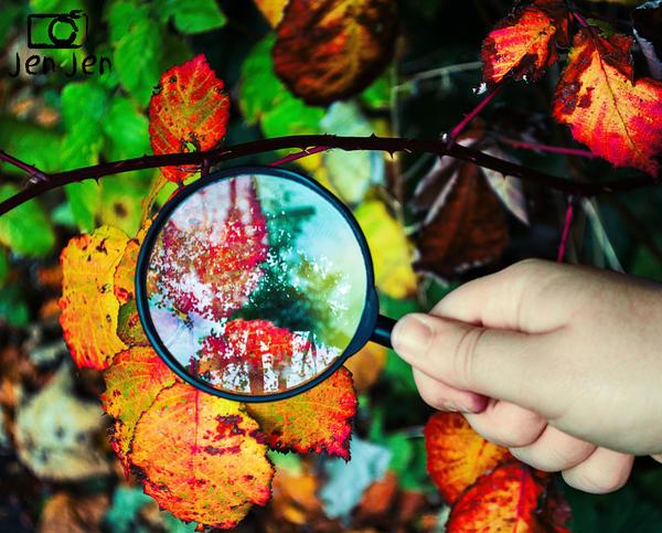 Discovering Autumn by VelvetRedBullet