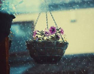 24/52 In the Falling Rain by VelvetRedBullet