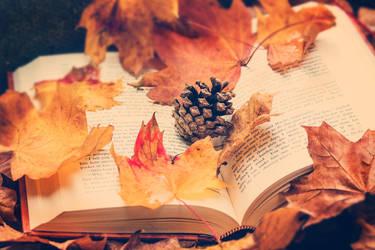 40/52 Soft Touch of Autumn by VelvetRedBullet