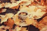 Autumn Leaf Tea II