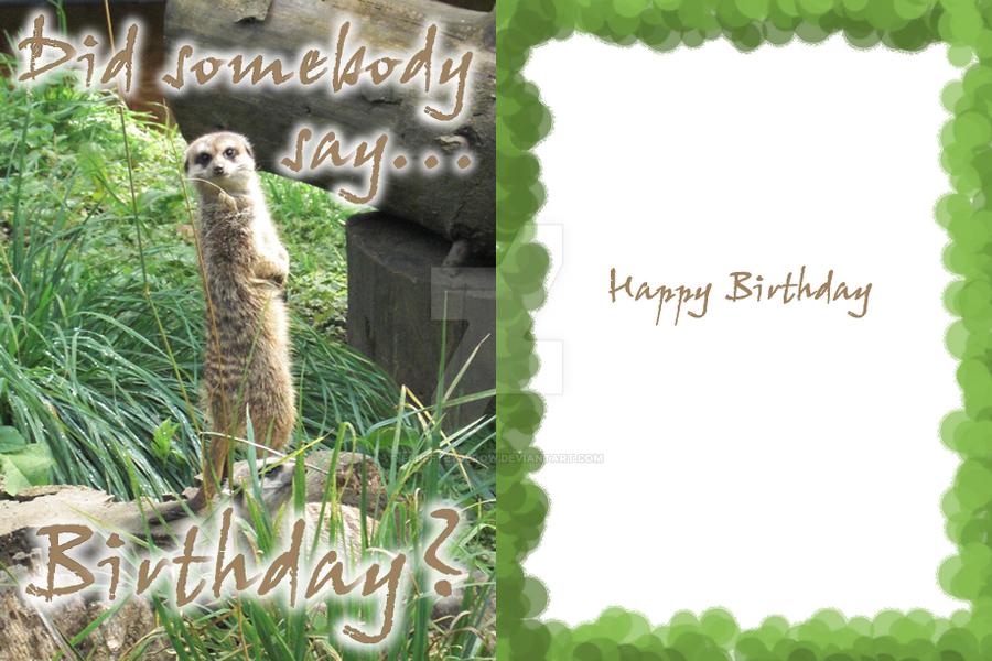 Meerkat Birthday Card By Fluffyeyebrow On Deviantart
