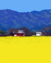Yellow field of... Yellowness by Shamdu