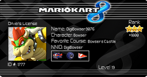Mario Kart 8 License! =D