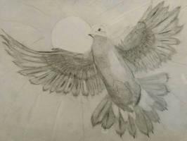 Dove soaring  by Jovial-Developer