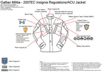 Insignia Regulations 2007EC - Gallian Militia by Vielwerth