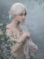 Cherry tenderness by Helea1