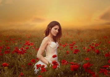 The Poppy Fields Adventures by Helea1