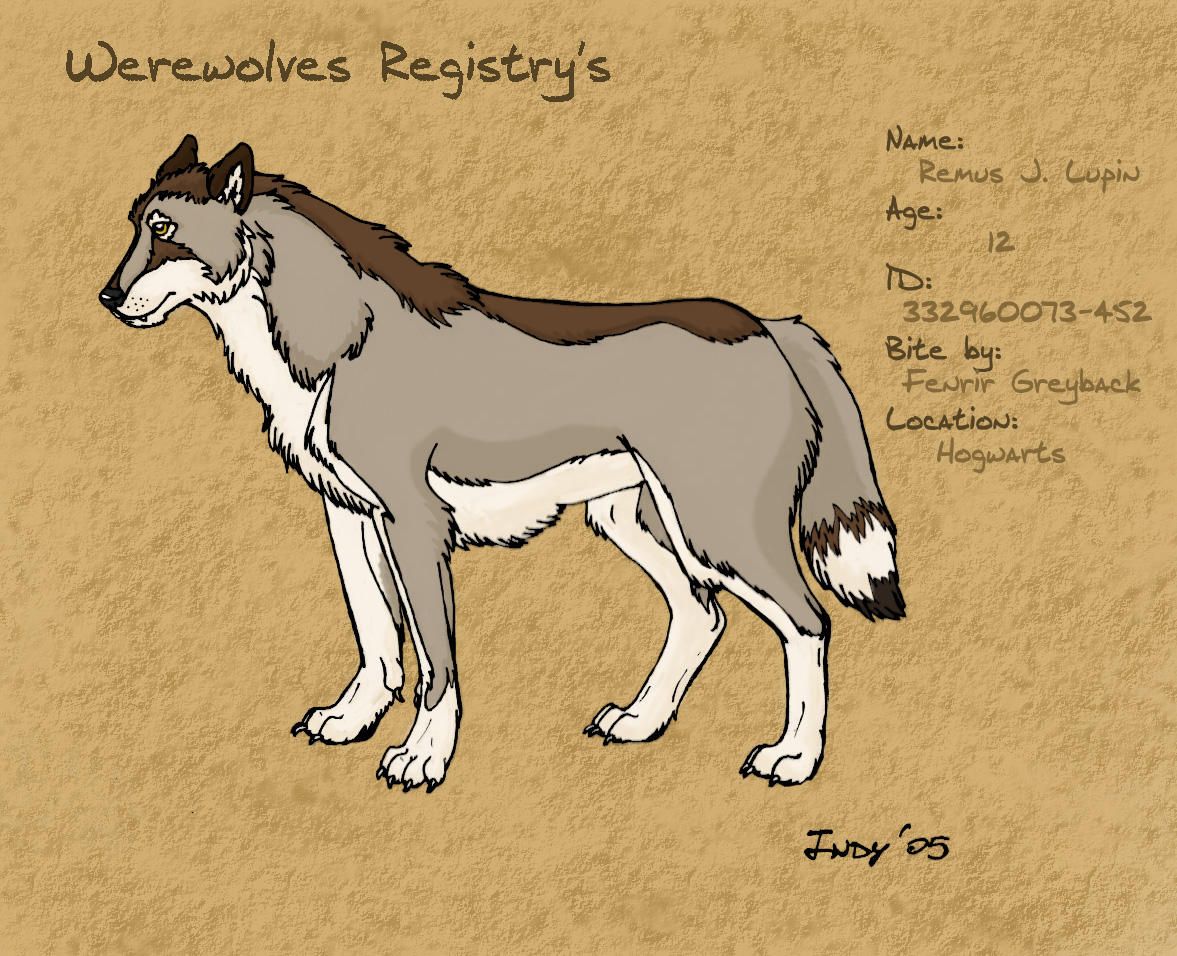 <img:http://fc00.deviantart.com/fs7/i/2005/238/4/c/Remus_Lupin__by_IndyCloes.jpg>