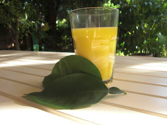 Orange Juice :3