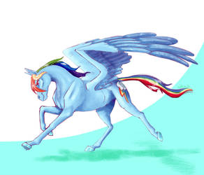 Thoroughbred Rainbow Dash - MLP horse breeds by Holka13