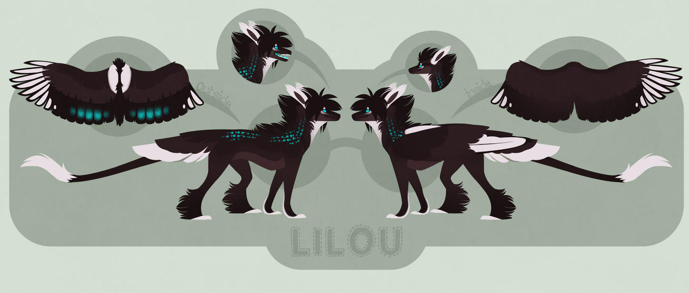 Lilou reference sheet by Shegoran