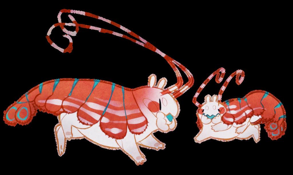 Buggie shrimp (closed) by Shegoran