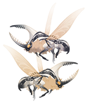 Beetle adoptable (ota)