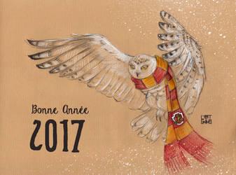 Happy New Year 2017 ! by selewyn