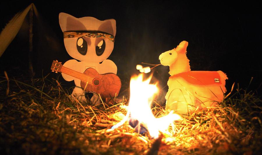 Campfire by Dakarri
