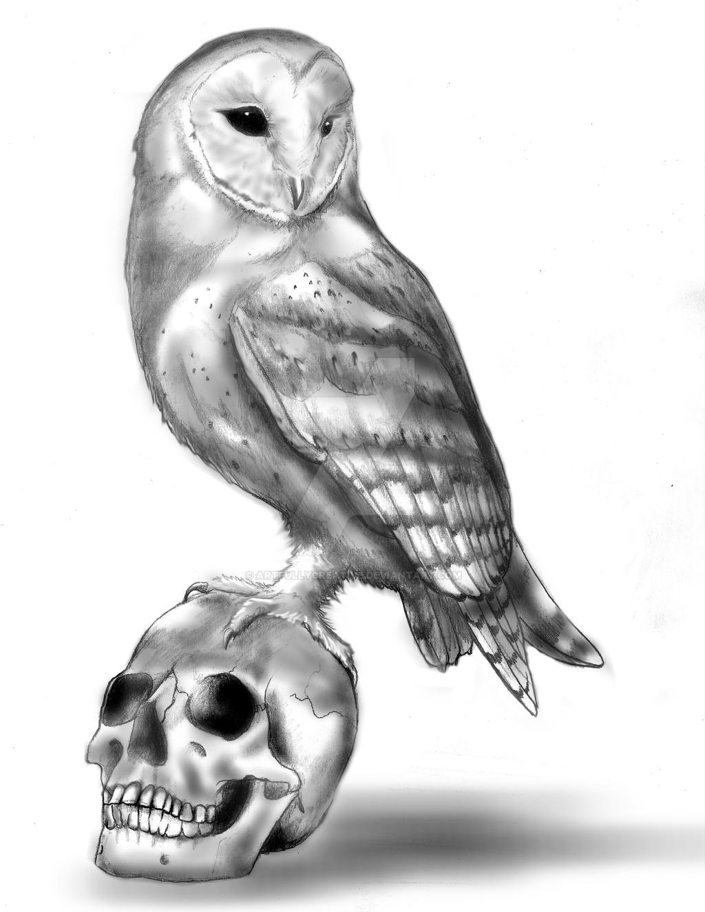 Owl and skull by artfullycreative on DeviantArt