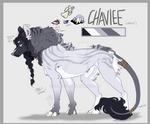 Chaviee-2020