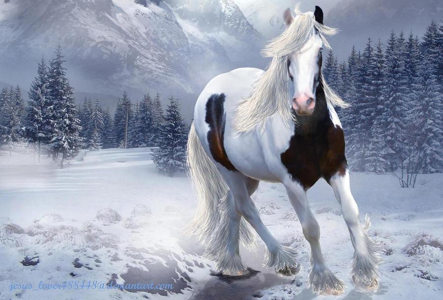 Gypsy Winter Wallpaper by jesuslover488448 on DeviantArt