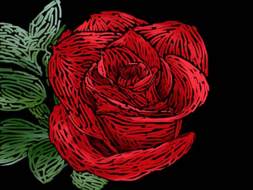 The gallery for --> Scratch Art Roses Scratch Art Roses