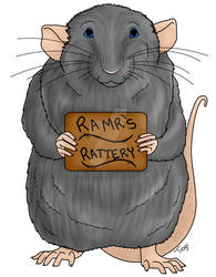 RAMR Rat Complete