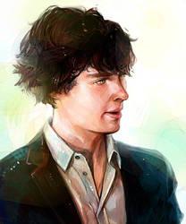 Benedict Cumberbatch by Haining-art
