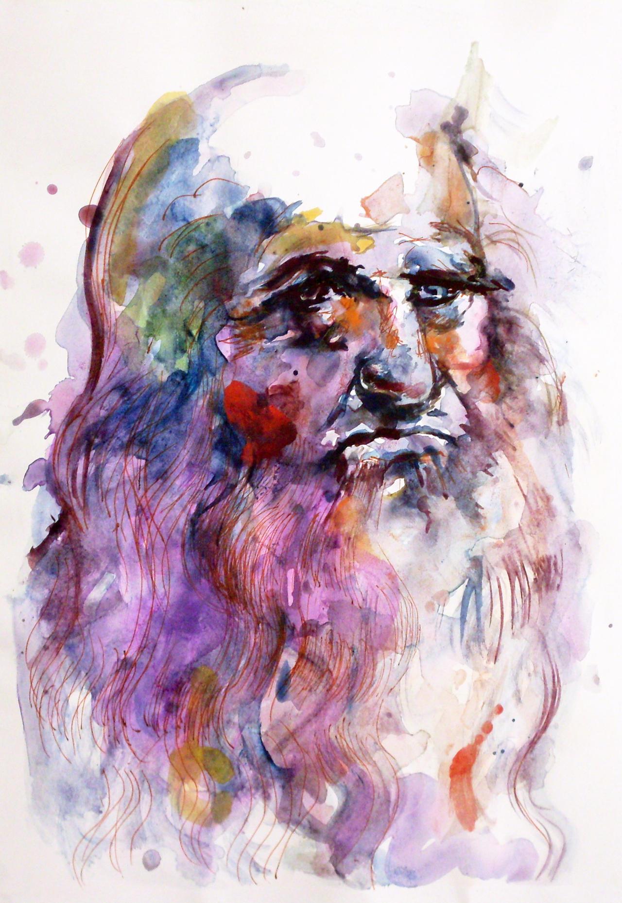 da Vinci by Howard0