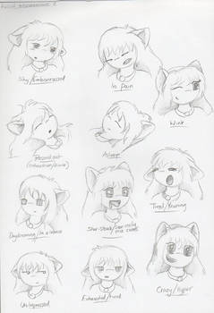 expression page 2