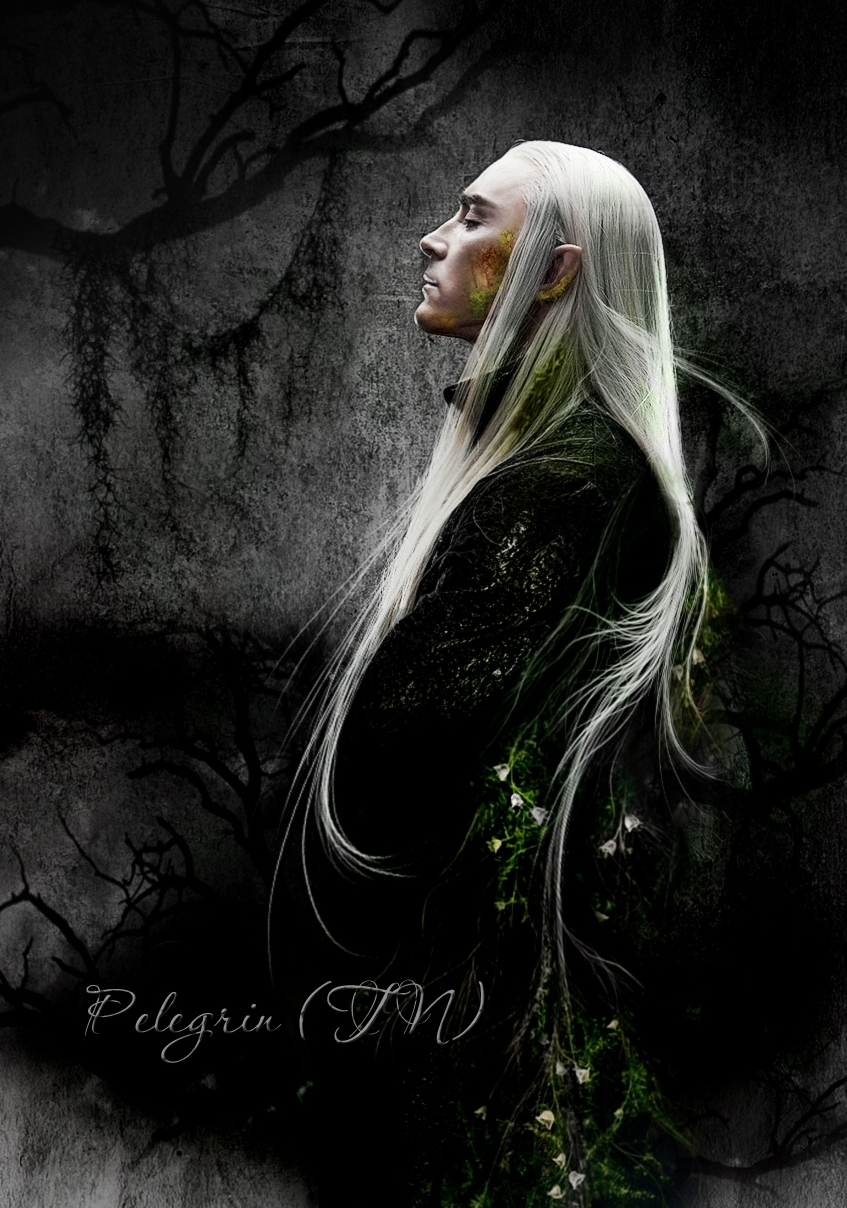 Mirkwood shadow by Pelegrin-tn