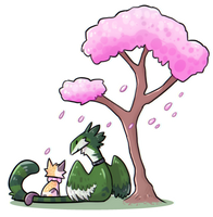 blossom by tiecora