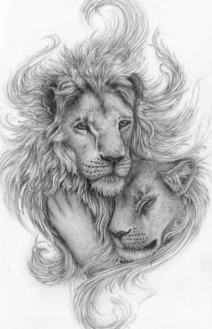 Lions by Avestra on De...