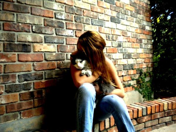 Kitty and the bricks by kacibizarre