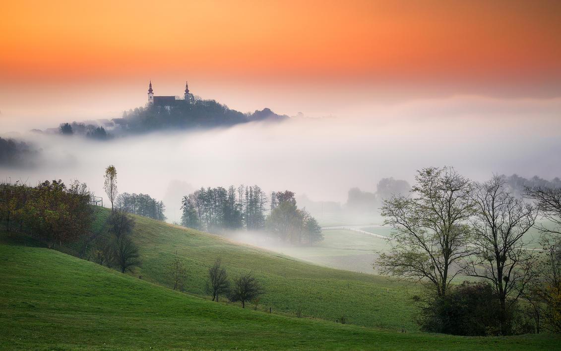 Foggy Morning by TomazKlemensak