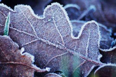 Frost by specyficzniee147