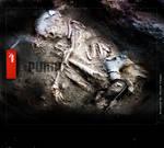 new puma adv.
