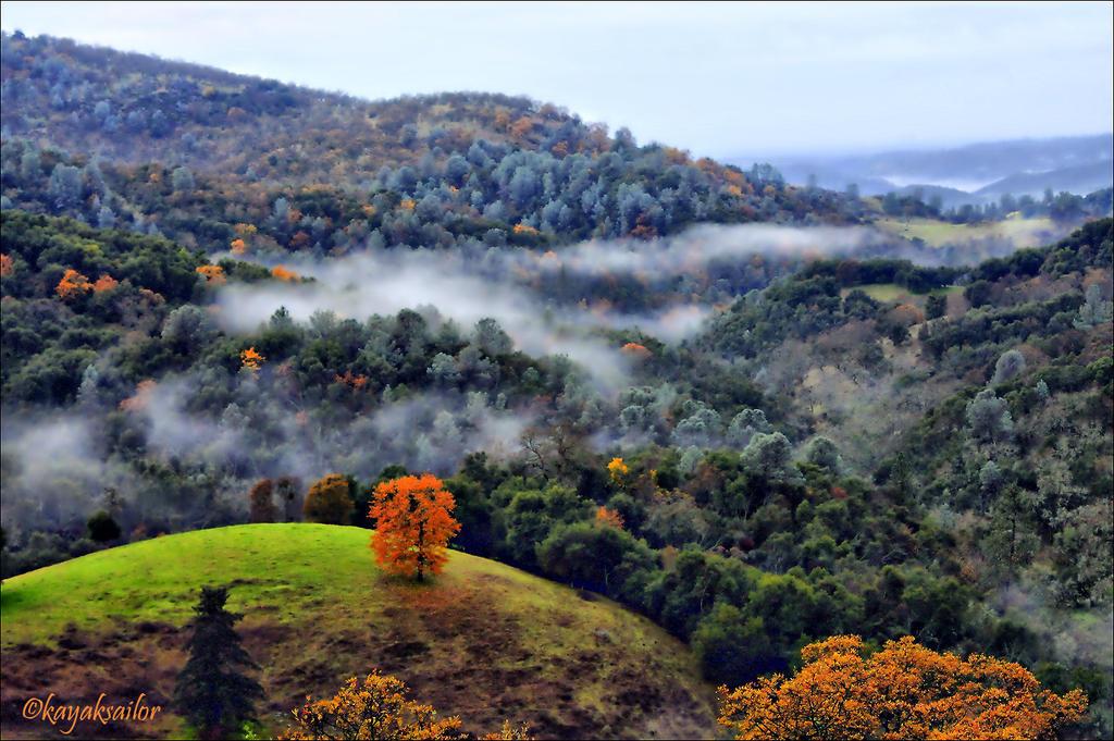 autumn fog by kayaksailor