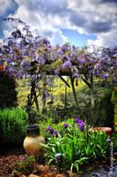 Spring in my garden by kayaksailor