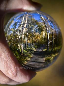 Through the crystal ball