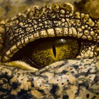 Gator Eye Study
