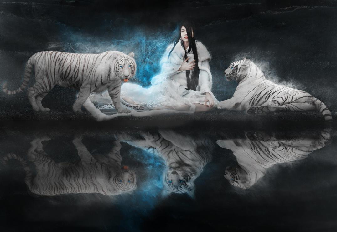 Love Animals Tigers Human Dude 1920x1080 Wallpaper Animals: White Tiger By RuiYujin On DeviantArt