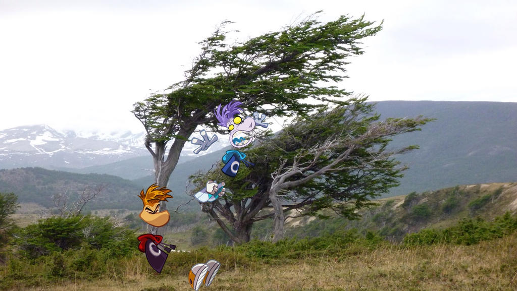 Image result for windy day