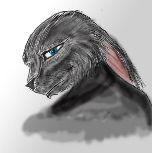 Rabbit by SvirreFisk
