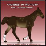 Horse In Motion - Walking by CKR-DK