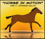 Horse In Motion - Extd. Gallop by CKR-DK