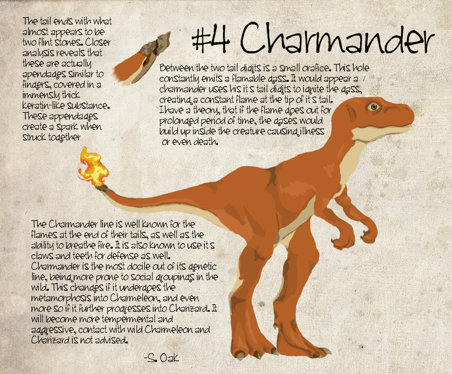 Field Study: Charmander by TravestyYM