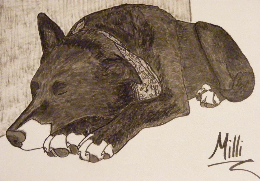 Milli in Ink by xALPHAxWOLFx